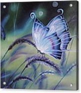 Butterfly Series #3 Acrylic Print