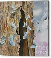 Butterfly Tree Acrylic Print by Paula Marsh