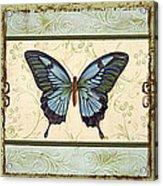 Butterfly Trio-3 Acrylic Print