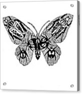 Butterfly With Design Acrylic Print