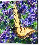 Butterfly With Purple Flowers 3 Acrylic Print