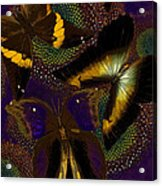 Butterfly Worlds Acrylic Print