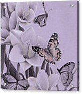 Butterflies In A Field Of Freesias Acrylic Print