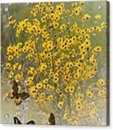 Butterfly's Paradise Acrylic Print