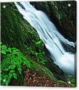 Buttermilk Falls Gorge Acrylic Print