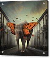 Butterphant Acrylic Print