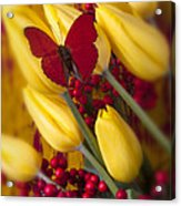 Buttery At Rest Acrylic Print
