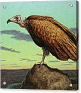 Buzzard Rock Acrylic Print