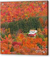 By Autumn Surrounded Acrylic Print