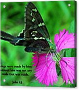 By Him All Things Acrylic Print