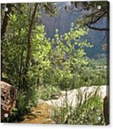 By The Emerald Pools - Zion Np Acrylic Print