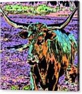 By The Horns Acrylic Print