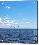 Bye Bye Birdies Panoramic Acrylic Print