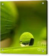 C Ribet Orbscape 1388sa Acrylic Print by C Ribet
