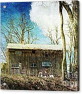 Cabin Fever Acrylic Print