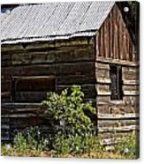 Cabin In The Wilderness Acrylic Print
