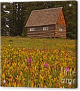 Cabin On Grand Mesa Acrylic Print