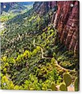 Cacti View Of Zion Acrylic Print