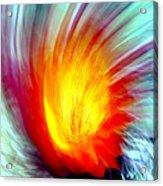 Cactus Fire 2 Acrylic Print