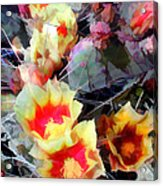 Cactus Flowers Bright And Prickly Acrylic Print