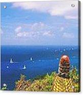 Cactus Overlooking Ocean Acrylic Print