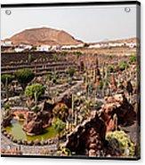 Cactus Paradise Acrylic Print