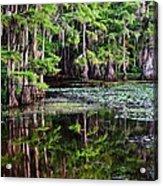 Caddo Dawn Acrylic Print