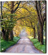 Cades Cove Great Smoky Mountains National Park - Sparks Lane Acrylic Print