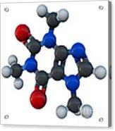 Caffeine Molecular Model Acrylic Print