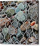 Caged By Barbara Griffin Acrylic Print