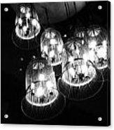 Caged Lights Acrylic Print