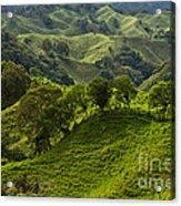 Caizan Hills Acrylic Print