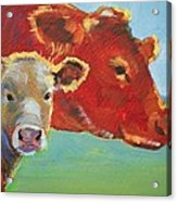 Calf And Cow Painting Acrylic Print