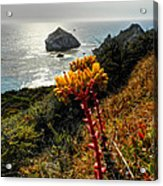 California - Big Sur 006 Acrylic Print by Lance Vaughn