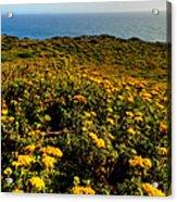 California - Big Sur 007 Acrylic Print by Lance Vaughn