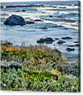 California Central Coast Near San Simeon Acrylic Print