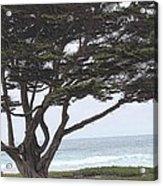 California Coast # 8 Acrylic Print