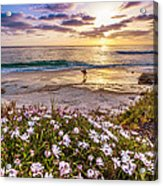 California Dreamin' Acrylic Print