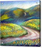 California Poppy Path Acrylic Print