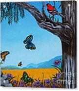 California Redwoods Acrylic Print