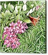 California Sidewalk Acrylic Print