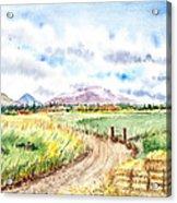 Californian Landscape Saint Johns Ranch Of Mountain Shasta County Acrylic Print