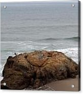 California Rock Acrylic Print