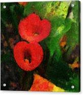 Calla Lilies Photo Art 03 Acrylic Print by Thomas Woolworth