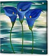 Calla Trio- Calla Lily Paintings Acrylic Print