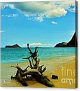 Calm And Quiet Morning  Acrylic Print