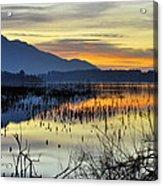 Calm At The Lake Acrylic Print