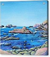Calm Surf With Water Bird Acrylic Print