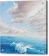 Calming Ocean Acrylic Print by Joe Mandrick