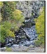 Calming Stream Acrylic Print
